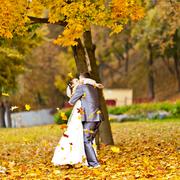 Свадебный фотограф в Гомеле за полцены только в апреле и мае!