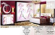 Мебель для спальни Калинковичский Мебельный Комбинат