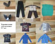 Купить Одежду В Гомеле