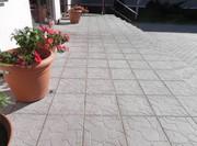 Тротуарная плитка Черепашка в Гомеле