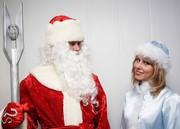 Дед Мороз и Снегурочка на дом. Работаем официально