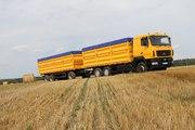 Грузоперевозка зерна,  услуги зерновозов,  самосвалов