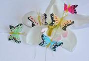 Бабочки,  птички,  стрекозы (3-15см) в ассортименте