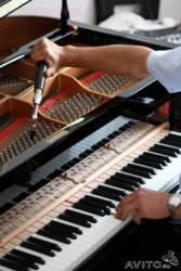 Настройка фортепиано(пианино,  рояль)
