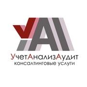 ООО «УчетАнализАудит»